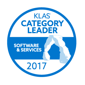Category-Leader-2017